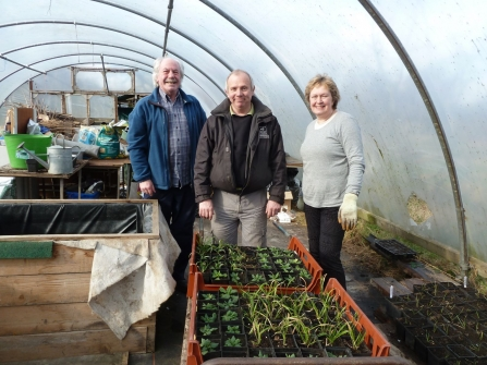 staff and volunteers in one of the polytunnels