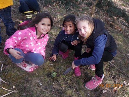 Children from Milking Bank Primary School planting primroses