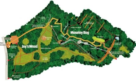 Map of Moseley Bog