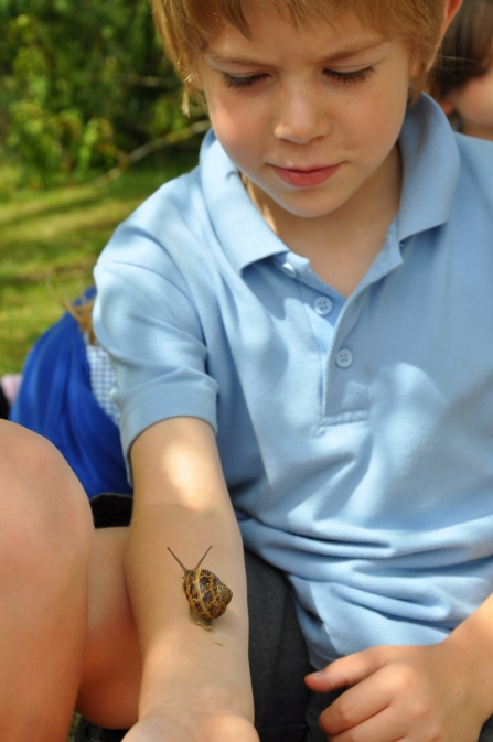 snail crawling up childs arm