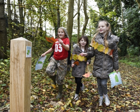 Children following the tree trail at Peascroft Wood