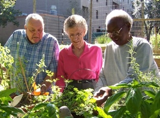 Elderly in nature