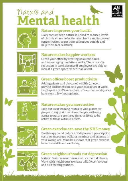 Nature & Mental Health Infographic
