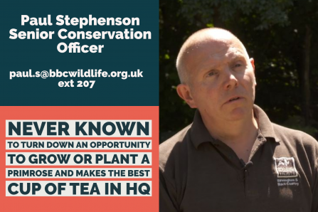 Paul - Senior Conservation Officer