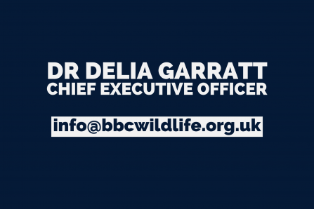 Dr Delia Garratt, CEO - info@bbcwildlife.org.uk