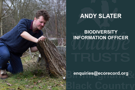 Andy Slater